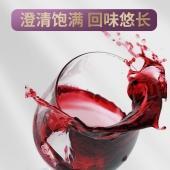 红寺堡 紫丽赤霞珠干红 750ml/瓶 高原产地 匠心工艺 国货好物 银奖红酒